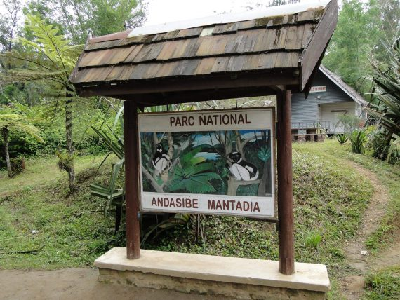 Andasibe tour with Tsiky Tour madagascar